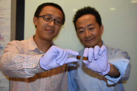 Dr. Yan Jiang holding a freshly made MAPbI3 perovskite solar cell can be seen on the left. MAPbI3 perovskite solar cells degrade, which is marked by a drastic change in color, as seen on the right, held by Dr. Shenghao Wang.