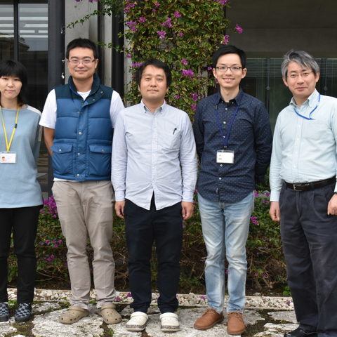 Past and present members of the Developmental Neurobiology Unit. From the left: Dr. Akane Hagiwara, OIST PhD student Hsieh-Fu Tsai, Dr. Toshiaki Mochizuki, OIST PhD student Yi-Jyun Luo and Prof. Ichiro Masai