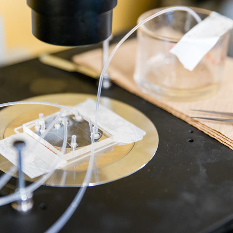 Microfluidic Platform